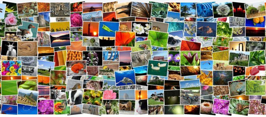 Bilder till blogg och social media